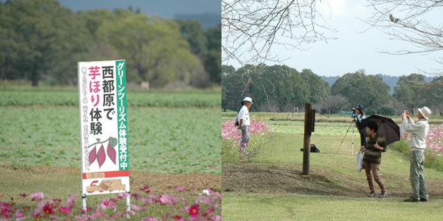 芋掘り体験&写真撮影