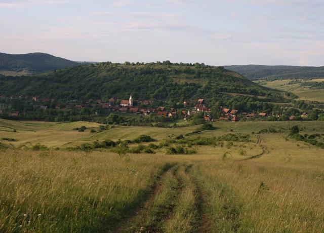 森の彼方-Transylvaniaへの扉