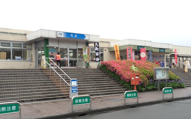 桜島サービスエリア 加治木まんじゅう