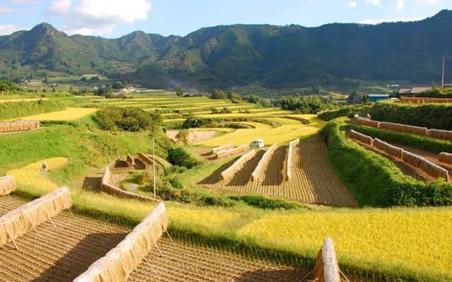 高千穂郷:世界農業遺産国内候補